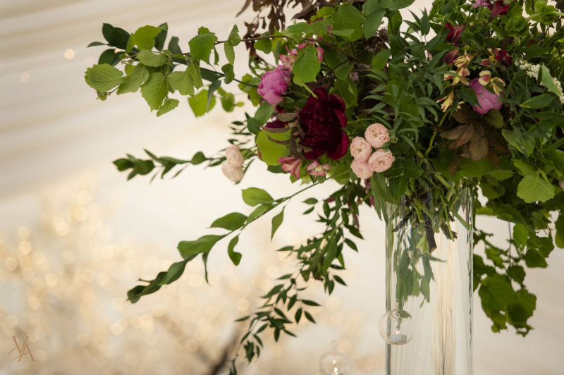 Shooters Hill Photographer_Victoria Amrose Photography (29)